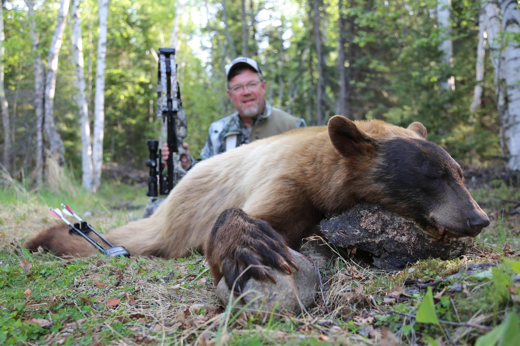 Adrenaline Rush Black Bears