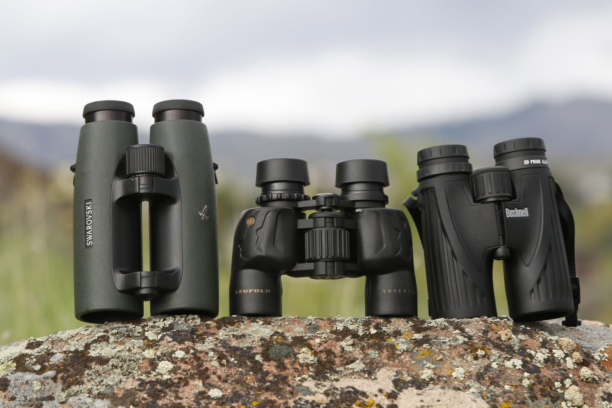 Choosing Optics for Hunting